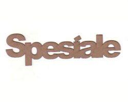 csw005-spesiale